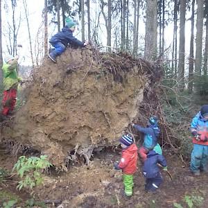 Eine Kletterwand mitten im Wald.